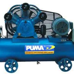 puma-pk50160